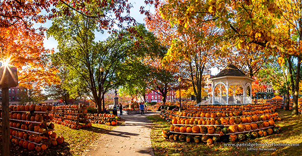 No shortage of pumpkins is found at the Keene Pumpkin Festival. Image courtesy of Keene Pumpkin Festival by Jeffrey Newcomer via Flikr.