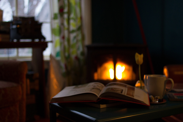 inside a cozy cabin with a roaring fire and a good book