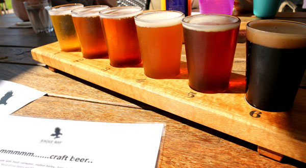 Beer tasting flight. Come taste over 100 unique, regional craft beers at Manchester Brewfest